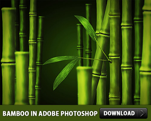 Bamboo In Adobe Photoshop L