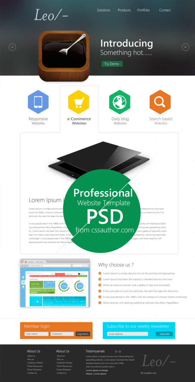 Professional Website Design Template PSD