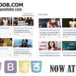 [Get] iYOOTOOB v1.0 – PREMIUM YOUTUBE CMS | PHP Scripts