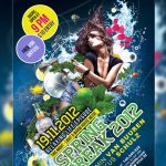 Party Flyer Poster Free PSD template